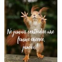 """Carte Humour Ecureuil """"Ne jamais contredire une femme énervée, jamais!"""""""