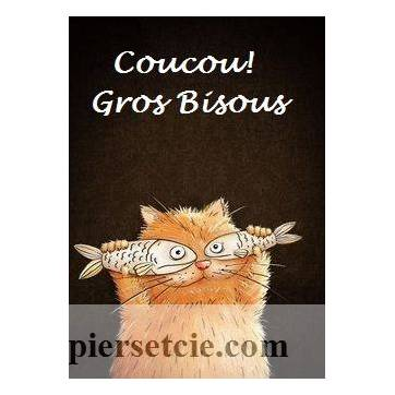 """Carte artisanale Chat """"Coucou Gros Bisous"""""""