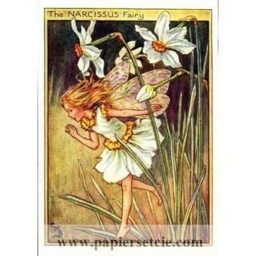 """Carte """"Fées des Fleurs"""" Cicely Mary Barker """"Narcisse"""""""