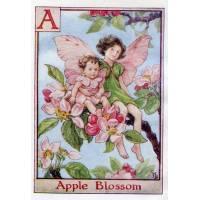 """Carte """"Fées des Fleurs"""" Cicely Mary Barker """"Fleurs de Pommier"""""""