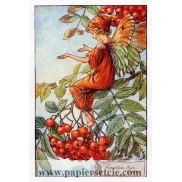 "Carte ""Fées des Fleurs"" Cicely Mary Barker ""Sorbier"""