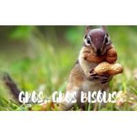 """Carte """"Gros Gros Bisous"""" Ecureuil et Cacahuètes"""