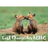 """Carte """"C'est l'heure des Bisous"""" Renardeaux"""