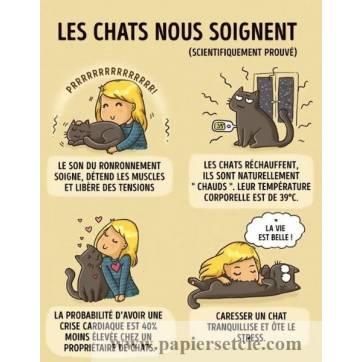 """Carte Chat """"Les chats nous soignent"""""""