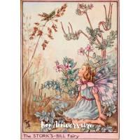 Carte Anniversaire Fées des Fleurs Erodium