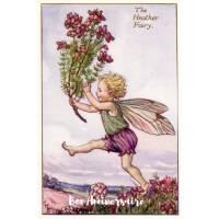 Carte Anniversaire Fées des Fleurs Bruyère