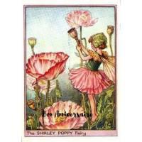 Carte Anniversaire Fées des Fleurs Pavots roses