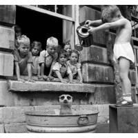 Carte Enfants Noir et Blanc Enfants et Suricate