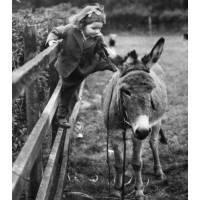 """Carte Enfants Noir et Blanc Vintage """"Fillette et Ane"""""""
