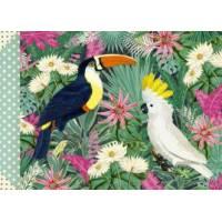 Carnet Gwenaëlle Trolez format horizontal Oiseaux