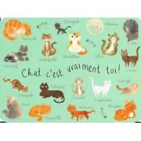 """Carte Anniversaire Audrey Bussi """"Chat c'est vraiment toi"""""""