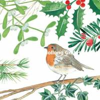 Carte Joyeux Noël ou Nouvel an Kerstin Hess Rouge Gorge