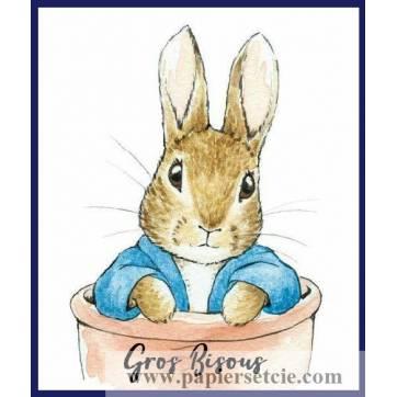 """Carte """"Gros Bisous"""" Beatrix Potter Peter Rabbit dans pot de terre"""