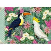 Carnet Gwenaëlle Trolez  Les Oiseaux
