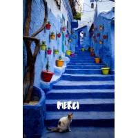 Carte Merci Chat sur Escalier bleu