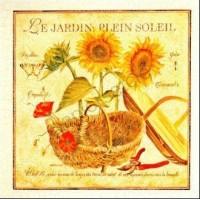 Carte Pascal Cessou Le jardin plein soleil
