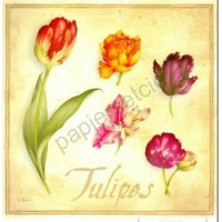 Carte Vincent Perriol Tulipes