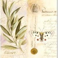 Carte Pascal Cessou Rameau d'Olivier
