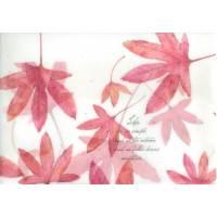 Enveloppe cadeau papier calque imprimé feuilles érables rouges
