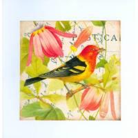 Carte artisanale shabby chic oiseau à tête rouge