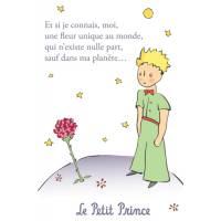 """Carte Le Petit Prince """"Nous écrivons des choses éternelles"""""""