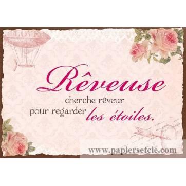 """Carte Citation Vintage """"Rêveuse cherche Rêveur"""