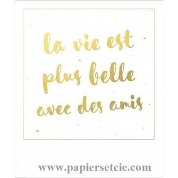 Carte Citation Format Polarod La Vie Est Plus Belle Avec Des Amis