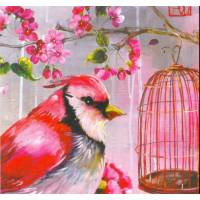 Carte d'art Gwenaëlle Trolez Sophie Addé Oiseau et cage