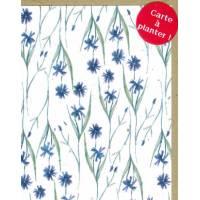 Carte à planter Hannah Marchant Bleuets, graines Fleurs des champs