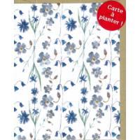 Carte à planter Hannah Marchant Petites Fleurs bleues, graines Fleurs des champs